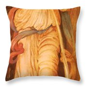 Temperantia 1872 Throw Pillow