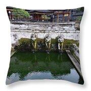 Temple Fountain Throw Pillow