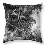 Temporary Tree Dwelling Throw Pillow