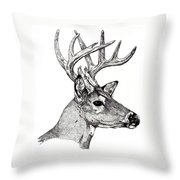 Ten Point Buck Throw Pillow
