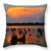 Ten Thousand Islands Florida Throw Pillow