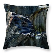 Tenacious  Throw Pillow