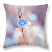 Tender Forget-me-not Flower Throw Pillow
