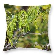 Tender Green Throw Pillow