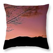 Tender Is The Night 3 Throw Pillow