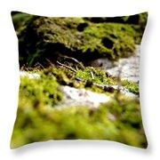 Tennesee Moss Throw Pillow