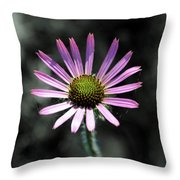 Tennessee Cone Flower Throw Pillow