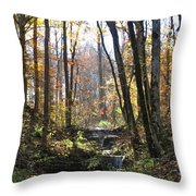 Tennessee Falls Throw Pillow