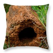 Termite Mound In Brazil Throw Pillow