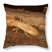 Termite Throw Pillow