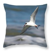 Tern Over The Waves Throw Pillow