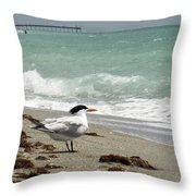 Tern's View Gp Throw Pillow