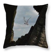 Tern Through The Gap Throw Pillow