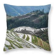Terrace Fields Scenery In Spring Throw Pillow