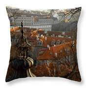 Terracotta Crowns Throw Pillow