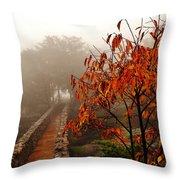 Terracotta Passages  Throw Pillow