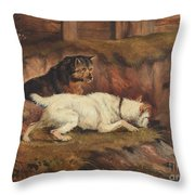 Terriers Ratting Throw Pillow