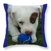 Tess Throw Pillow
