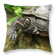 Tess The Map Turtle #2 Throw Pillow