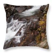 Teton Falls Throw Pillow