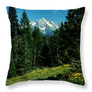Teton Meadow Throw Pillow