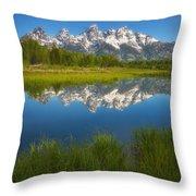 Teton Meadows Throw Pillow