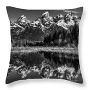 Teton Mono Throw Pillow