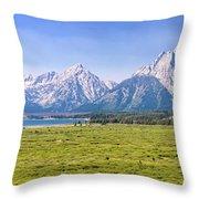Teton Panorama Throw Pillow