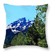 Teton Picture Perfect Throw Pillow