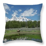 Teton Reflection With Buffalo Throw Pillow