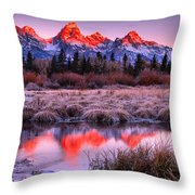 Teton Reflections In The Frosted Willows Throw Pillow