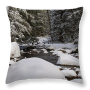 Teton River In Winter Throw Pillow