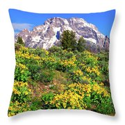 Teton Spring In The Valley Throw Pillow