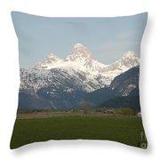 Teton Valley Throw Pillow