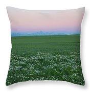 Tetons With Daisies Throw Pillow