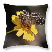 Texan Crescent Butterfly On Marigold-img_1348-2016 Throw Pillow