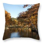 Texas Autumn Throw Pillow
