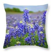 Texas Blue - Texas Bluebonnet Wildflowers Landscape Flowers  Throw Pillow