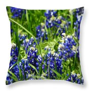 Texas Bluebonnets 002 Throw Pillow