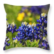 Texas Bluebonnets 006 Throw Pillow