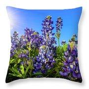 Texas Bluebonnets Backlit II Throw Pillow