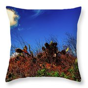 Texas Cactus Throw Pillow