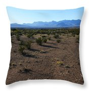 Texas Desert Throw Pillow