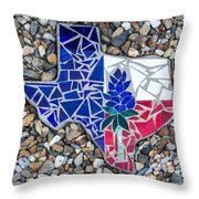 Texas Garden Stone Throw Pillow