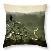 Texas Hawk Throw Pillow