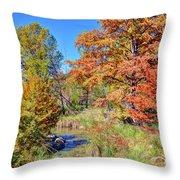 Texas Hill Country Autumn Throw Pillow