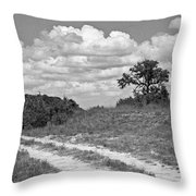 Texas Hill Country Trail Throw Pillow