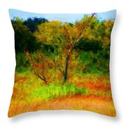 Texas Landscape 102310 Throw Pillow
