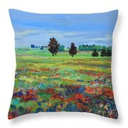 Texas Landscape Bluebonnet Indian Paintbrush Explosion Throw Pillow