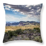 Texas Landscapes #3 Throw Pillow
